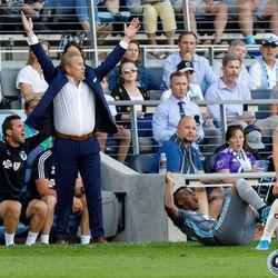 August 14, 2019 - Saint Paul, Minnesota, United States - Minnesota United head coach Adrian Heath looks for a call as Minnesota United forward Darwin Quintero (25) goes down during the match against the Colorado Rapids at Allianz Field.