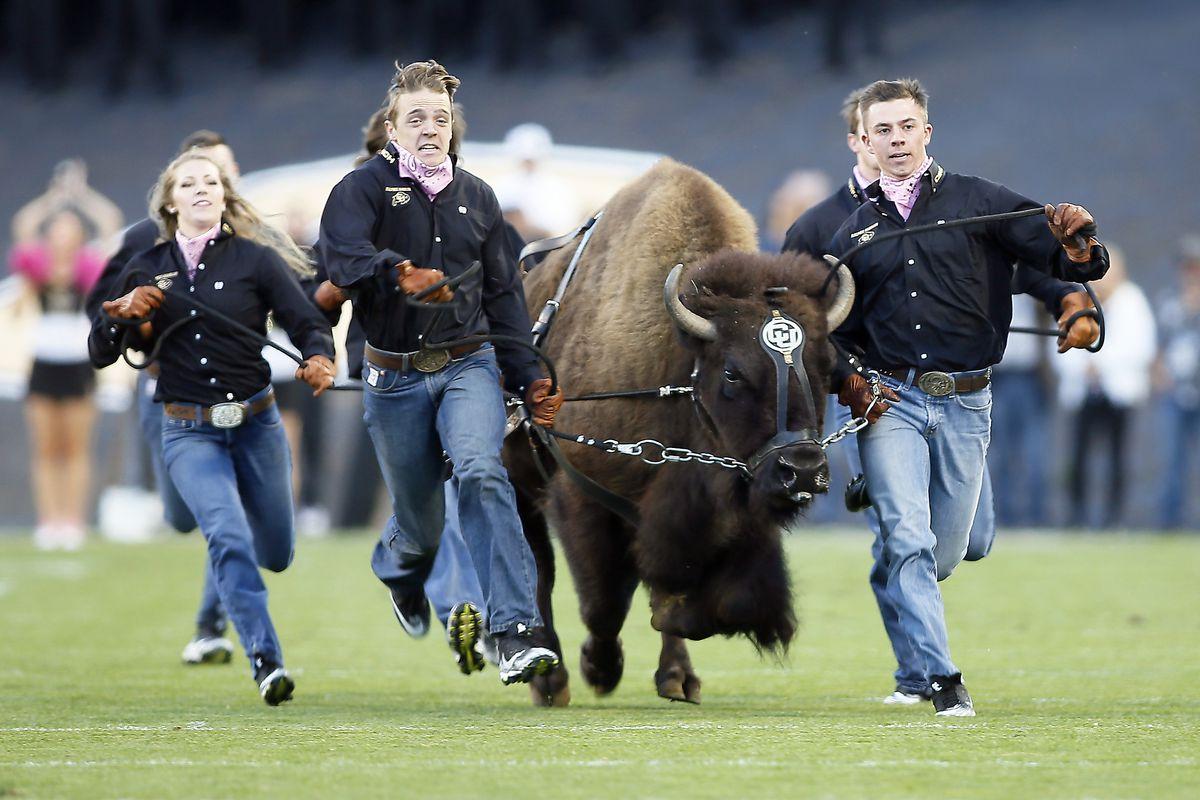 NCAA Football: Arizona at Colorado