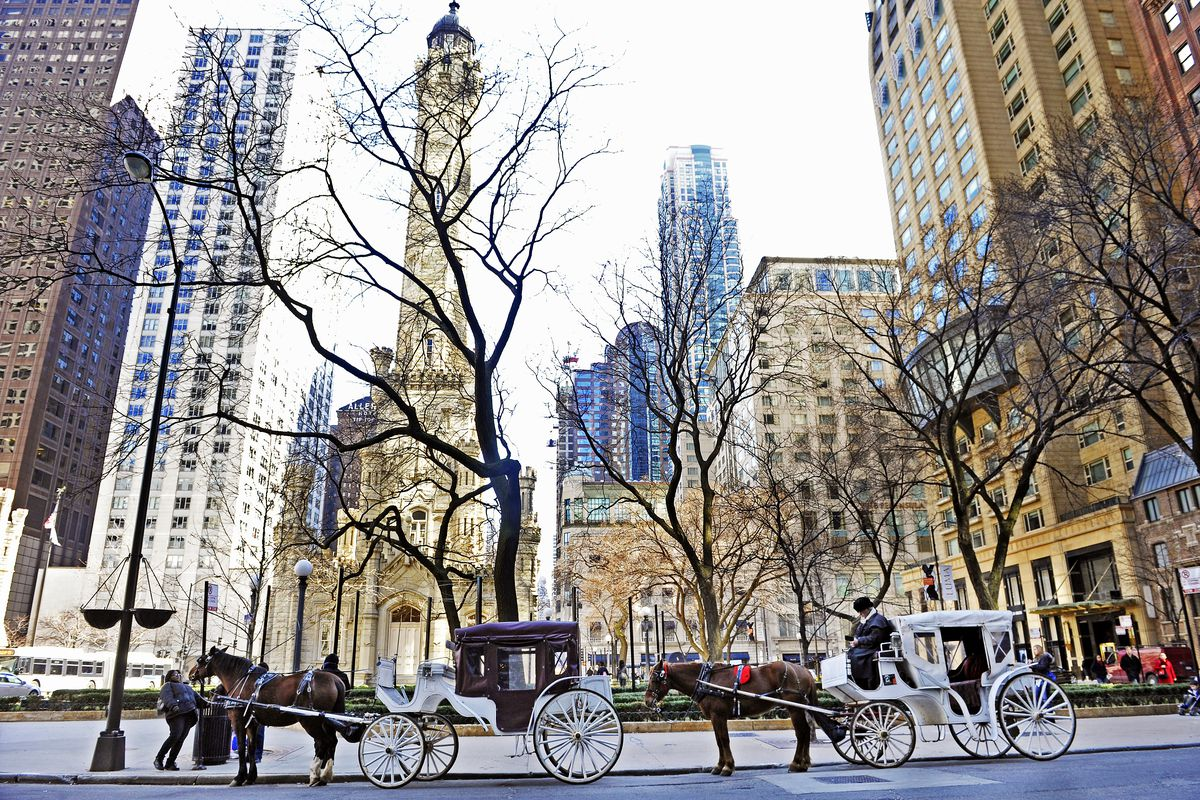 Horse-drawn carriages near Chicago's water tower.