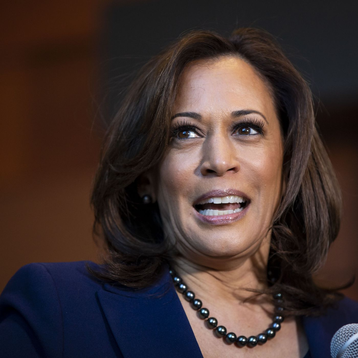 Kamala Harris Gut Punched Joe Biden And Now She S His Vice President Running Mate In A Historic Pick Chicago Sun Times