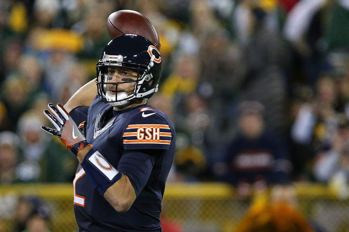 Brian Hoyer (GettyImages)