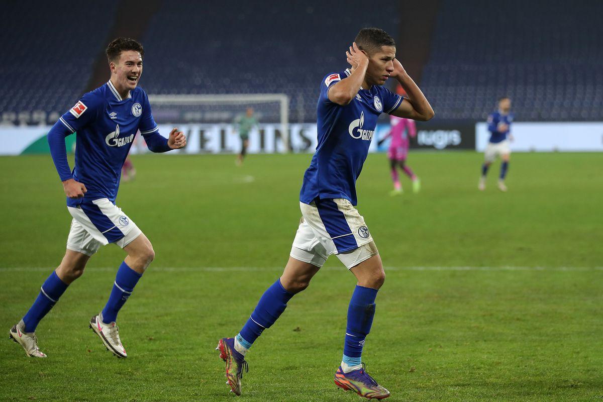 FC Schalke 04 v TSG Hoffenheim - Bundesliga