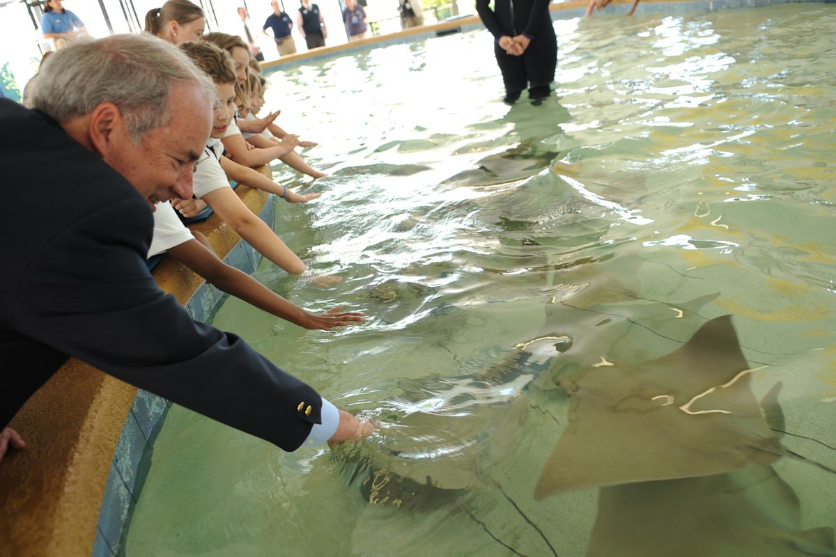 Shedd chief to retire next year - Chicago - Chicago Sun-Times