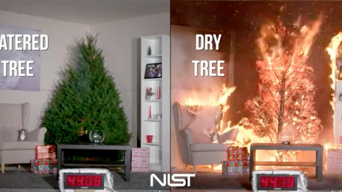 Christmas Tree On Fire.Don T Let A Dry Tree Ruin Christmas The Verge