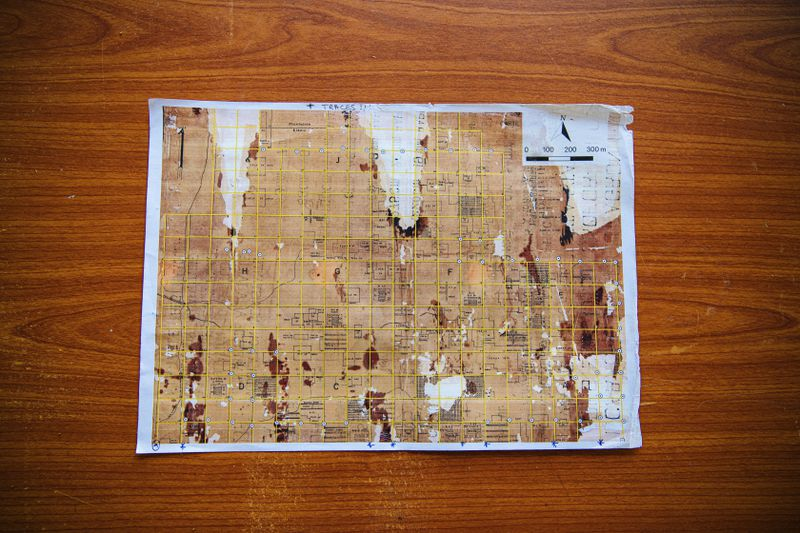The scientists at Yangambi are using this crumbling colonial map to understand how Afrormosia grows.