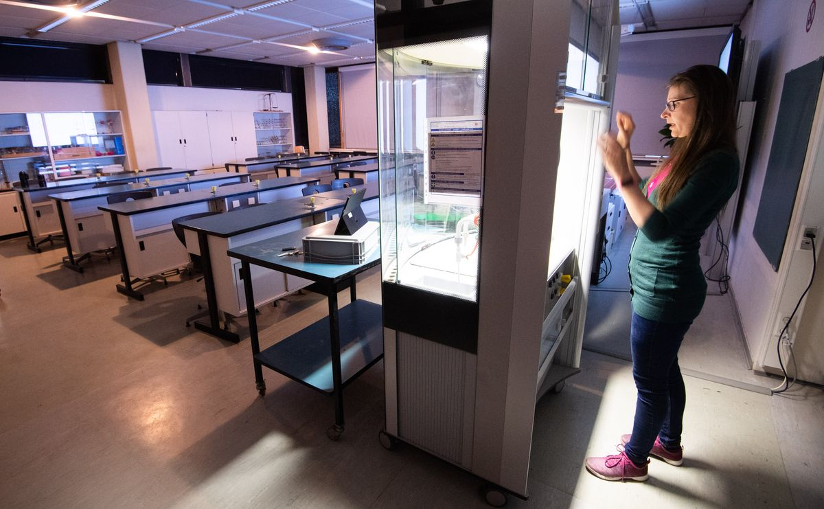 Coronavirus - Semester start universities
