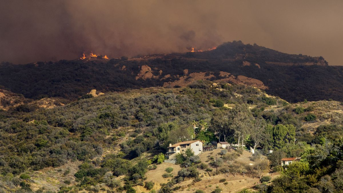 Palisades fire burns above Topanga Canyon Blvd in Los Angeles, CA.