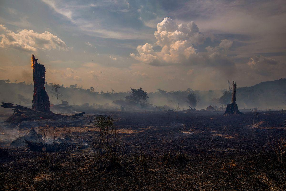 Vista de un área de bosque quemada en Altamira, estado de Pará, Brasil, en la cuenca del Amazonas, el 27 de agosto de 2019.  Joao Laet / AFP / Getty Images