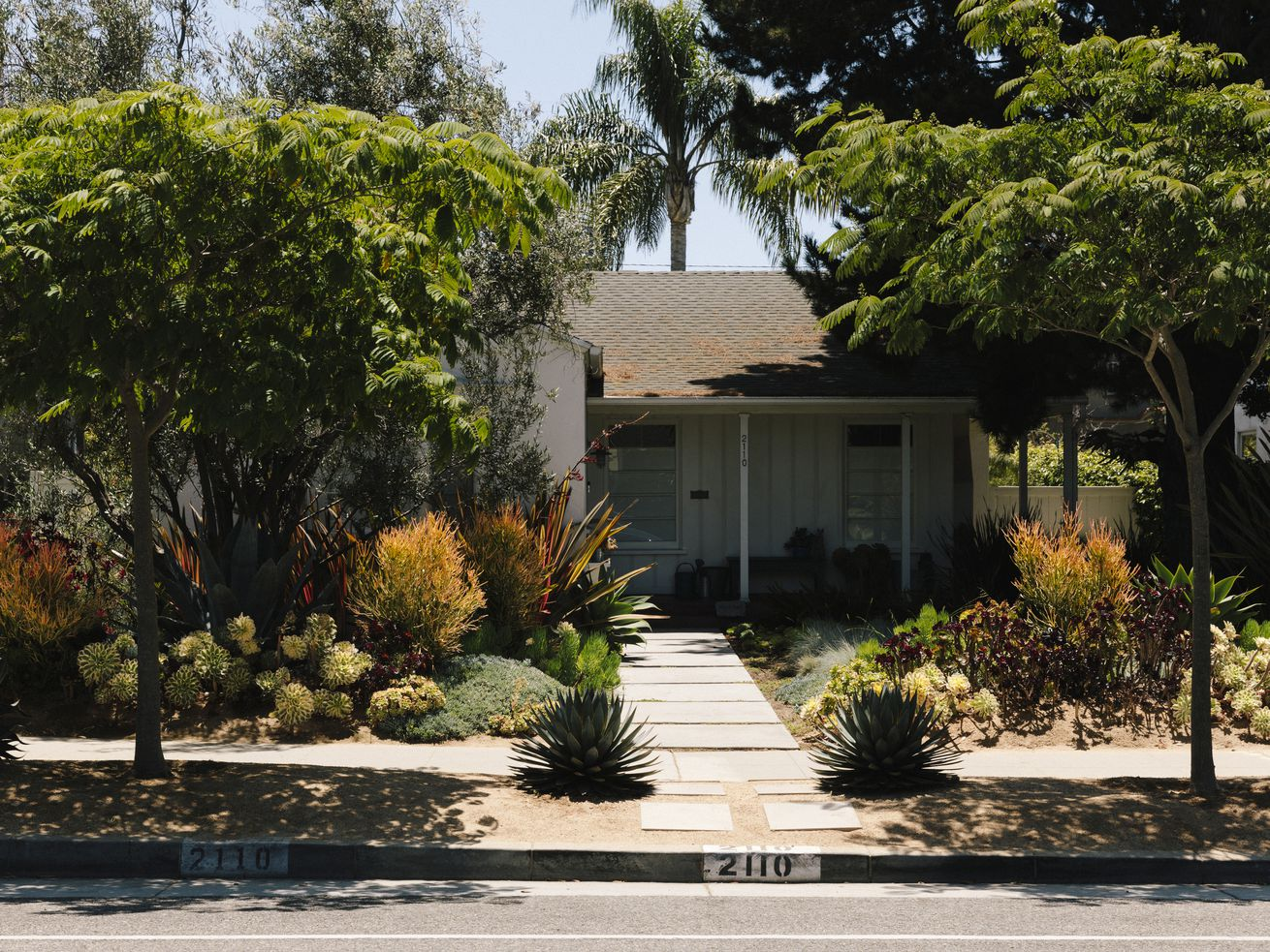 A small white-colored ranch house partially hidden behind trees and tall succulents