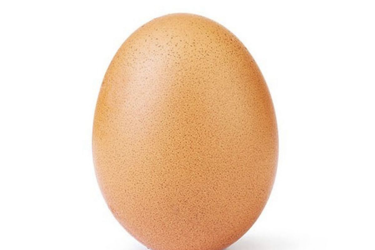A picture of a brown egg, balanced on its bottom.