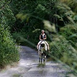 Cindy Furse rides her horse, named Friday, in the canyon.