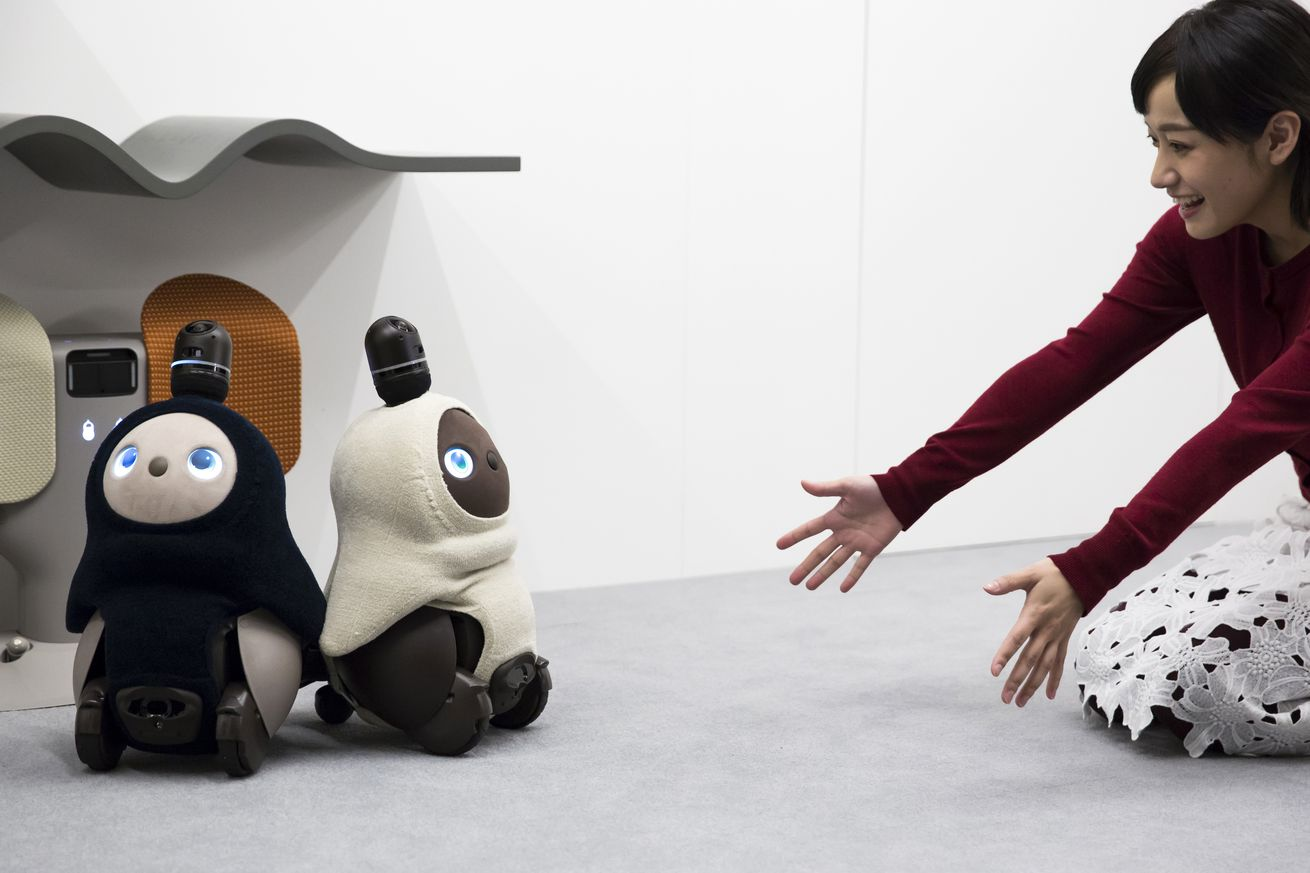 A pair of Lovot robots at their unveiling this week.