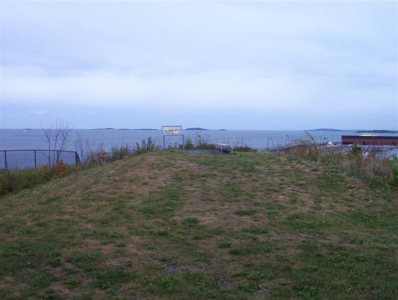 An expanse of grass with a blue-gray harbor in the distance.
