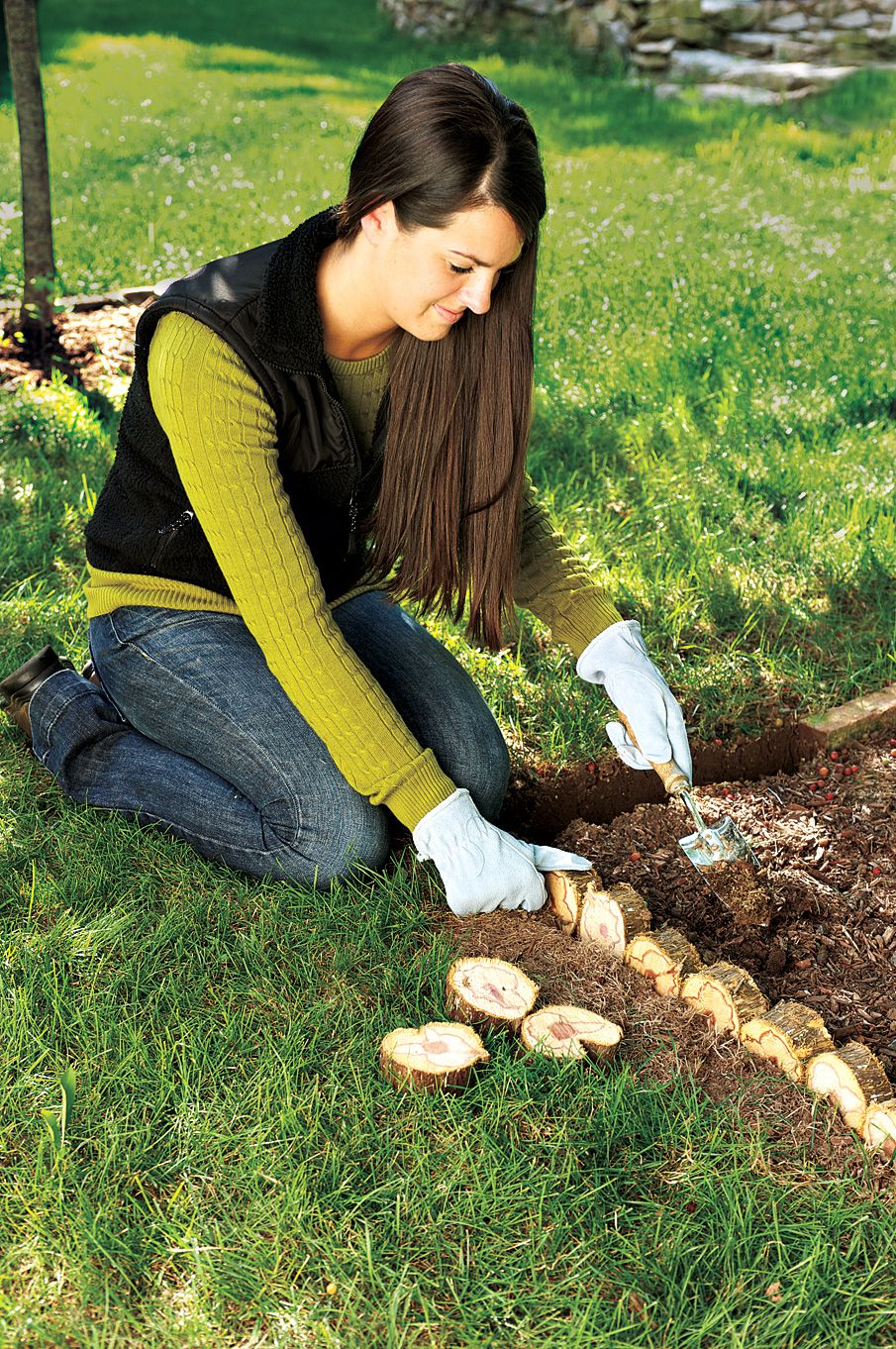 Person using pieces of the trunk from an old Christmas tree to create a border around their flower bed in the garden.