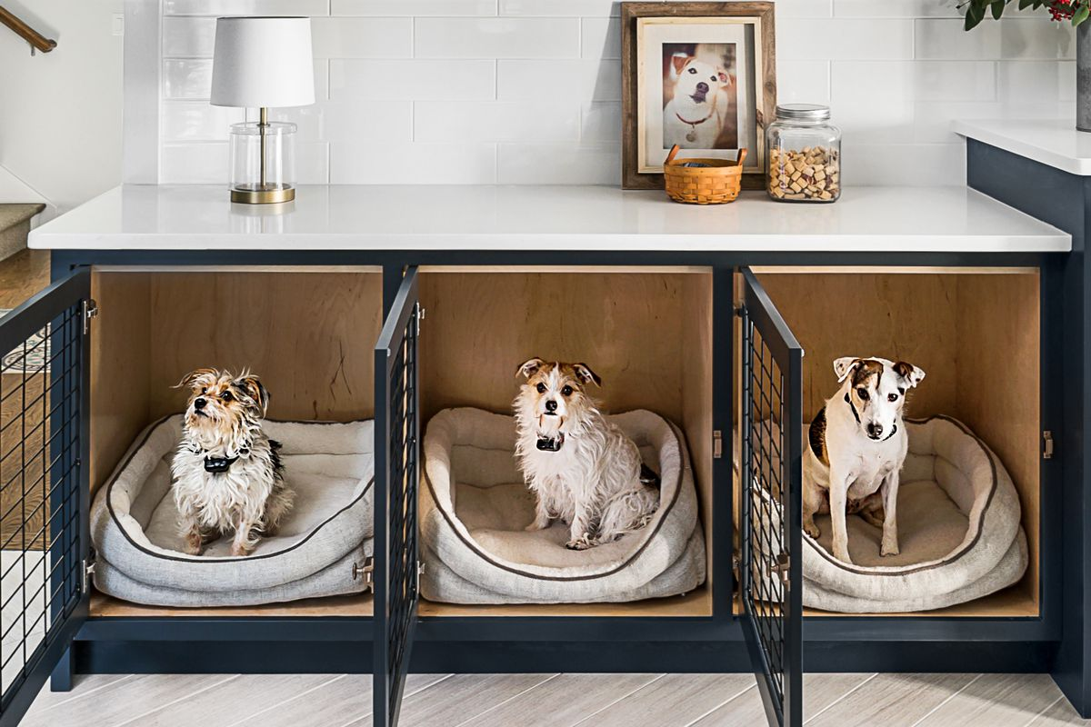 Spring 2021, Animal House, built-in dog crates