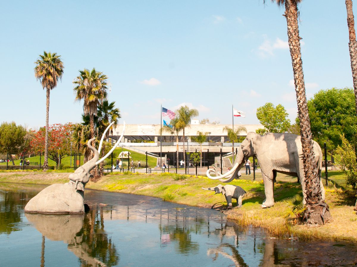 Things to do in Los Angeles: 30 kid friendly attractions