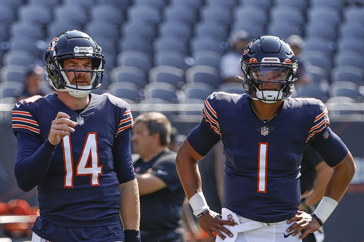 Justin Fields and Andy Dalton have each started for the Bears this season.