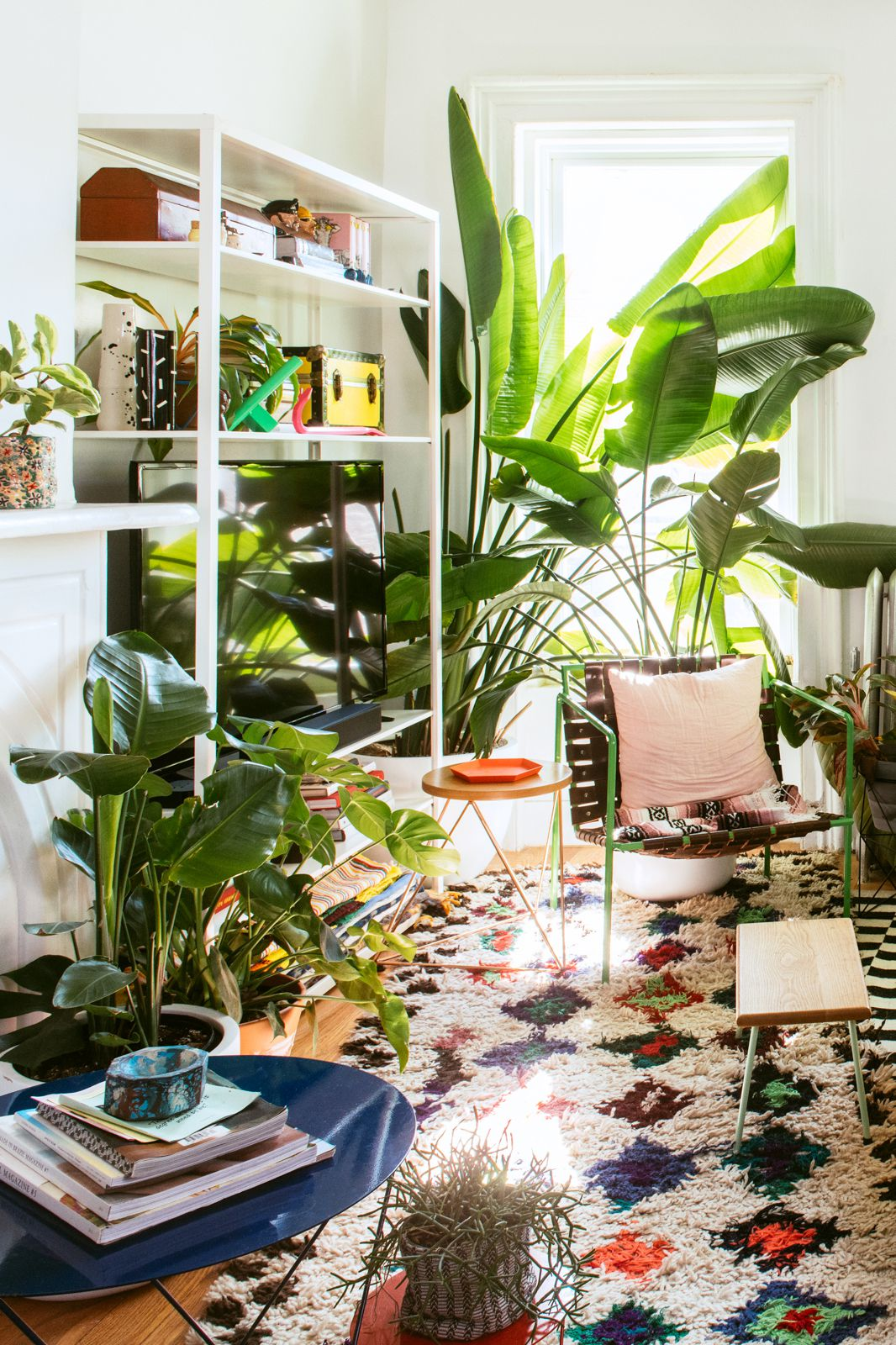 A living room with tall Birds of Paradise plants, a neon-green wiry chair, Moroccan rug, and knick knacks on a white shelf