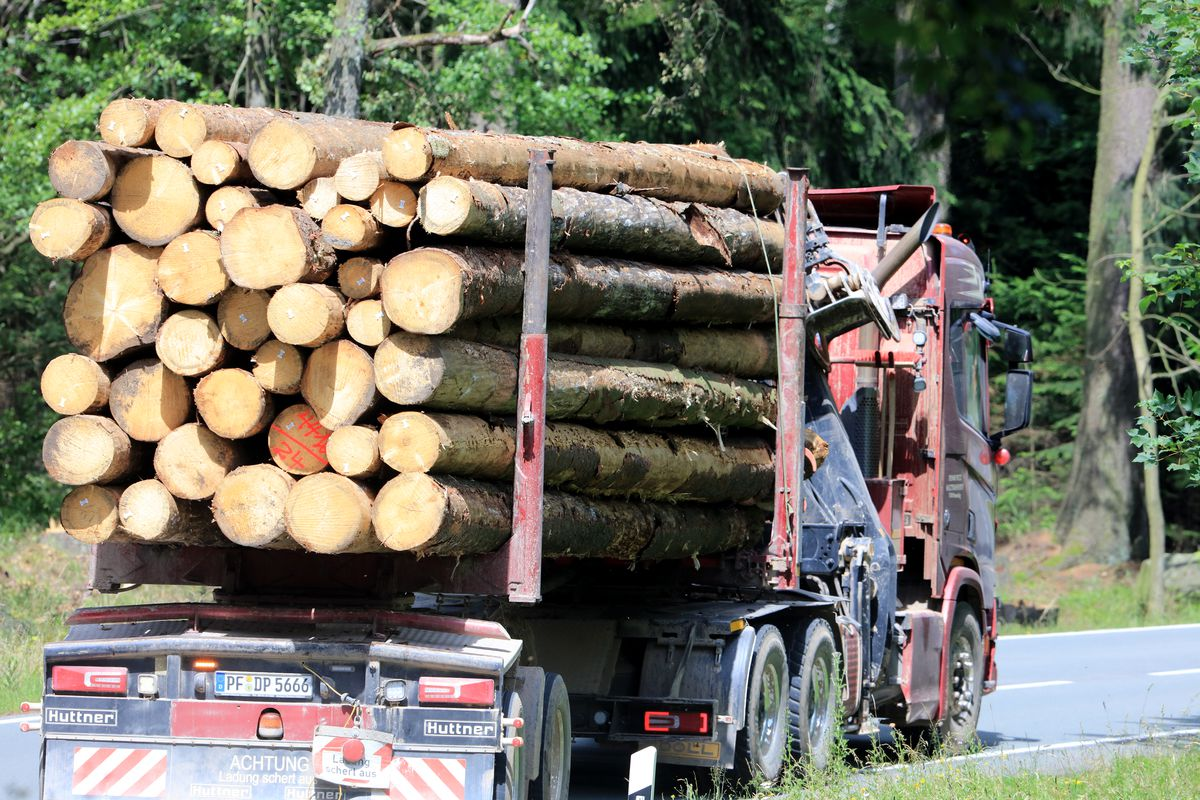A truck driving timber.