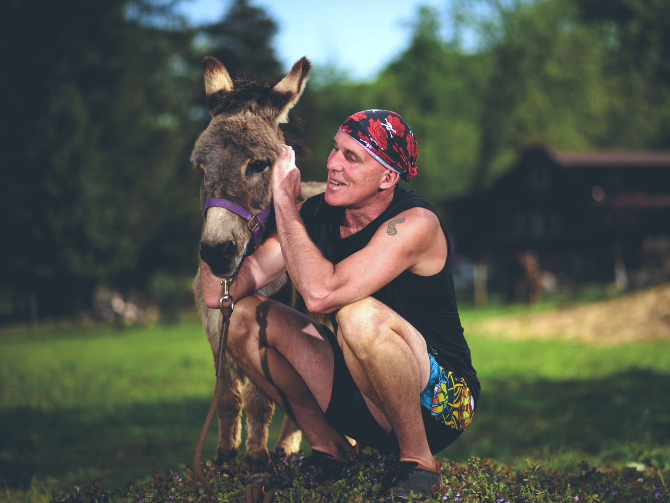 The hottest new running book is about … donkeys?