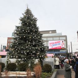 A look at the holiday tree, and a rather incongruous gift suggestion
