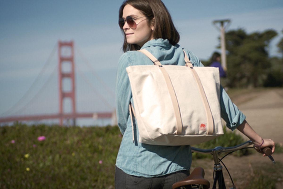 """The Bike to Beach bag from <a href=""""http://www.alitedesigns.com/"""">Alite Designs</a>"""