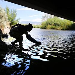 Suzan Tahir, environmental scientist for the Utah Department of Environmental Quality's water quality division, takes samples from the Jordan River in North Salt Lake on Monday, July 18, 2016.