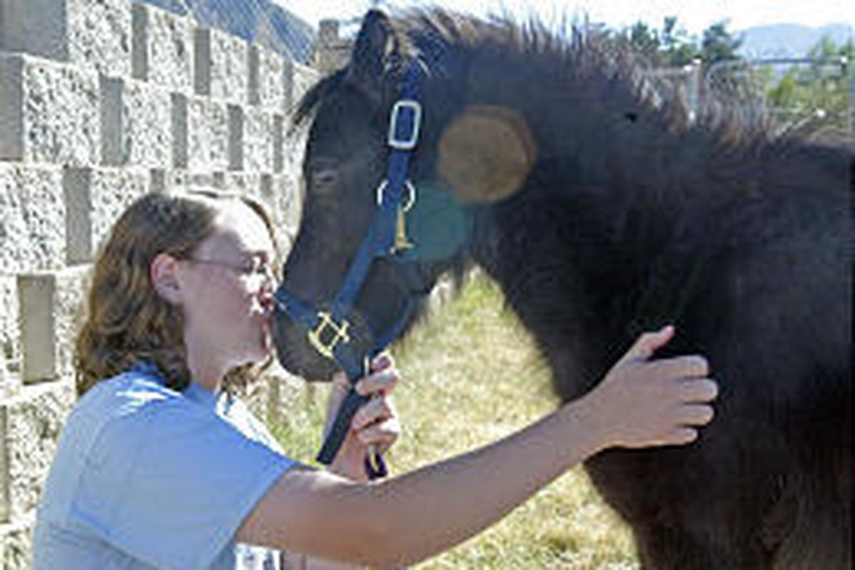 Brittany Anderson pets her miniature horse, Ace. Anderson has asked Elk Ridge leaders to allow her to keep the pet.