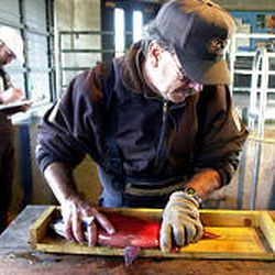 Strawberry project manager Roger Wilson measures a kokanee salmon as bio-aide Rich Denton records data in preparation for spawning at Strawberry.