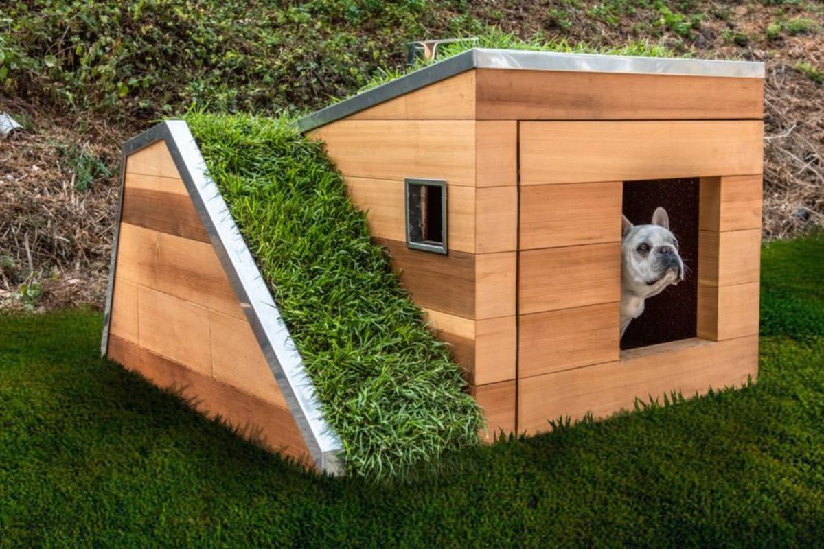 Next Level Sustainable Dog House Puts All Other Dog Houses To Shame