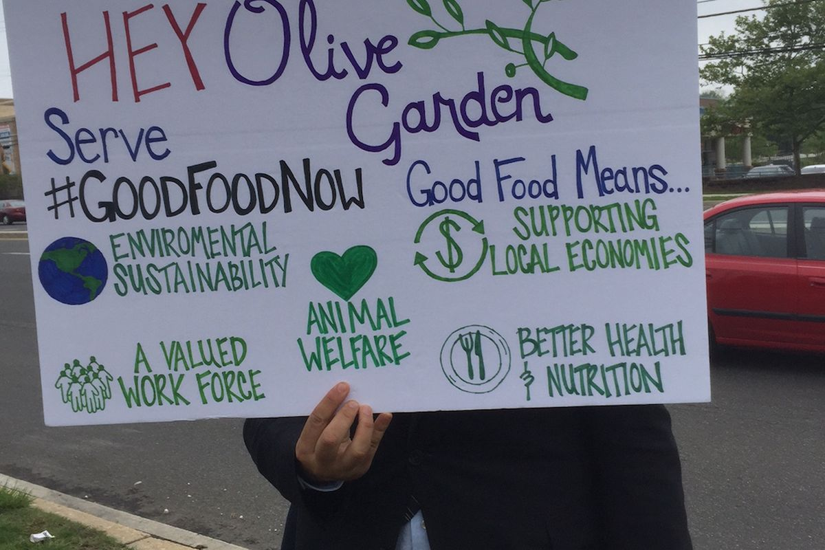 protesters took to olive garden restaurants in six major us cities thursday to pressure the restaurants parent chain darden restaurants to institute - Olive Garden Salary