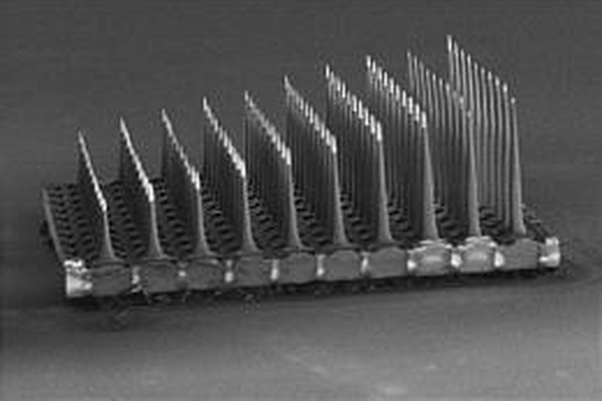 The Utah Slanted Electrode Array, a pill-size device that allows communication with nerve fibers, will be modified for the project.