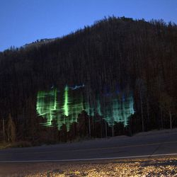 """""""Regeneration,"""" a digital video installation by Sean Noyce, will be projected onto a charred hillside in Parowan Canyon near Brian Head Resort on the evening of Friday, Aug. 31."""