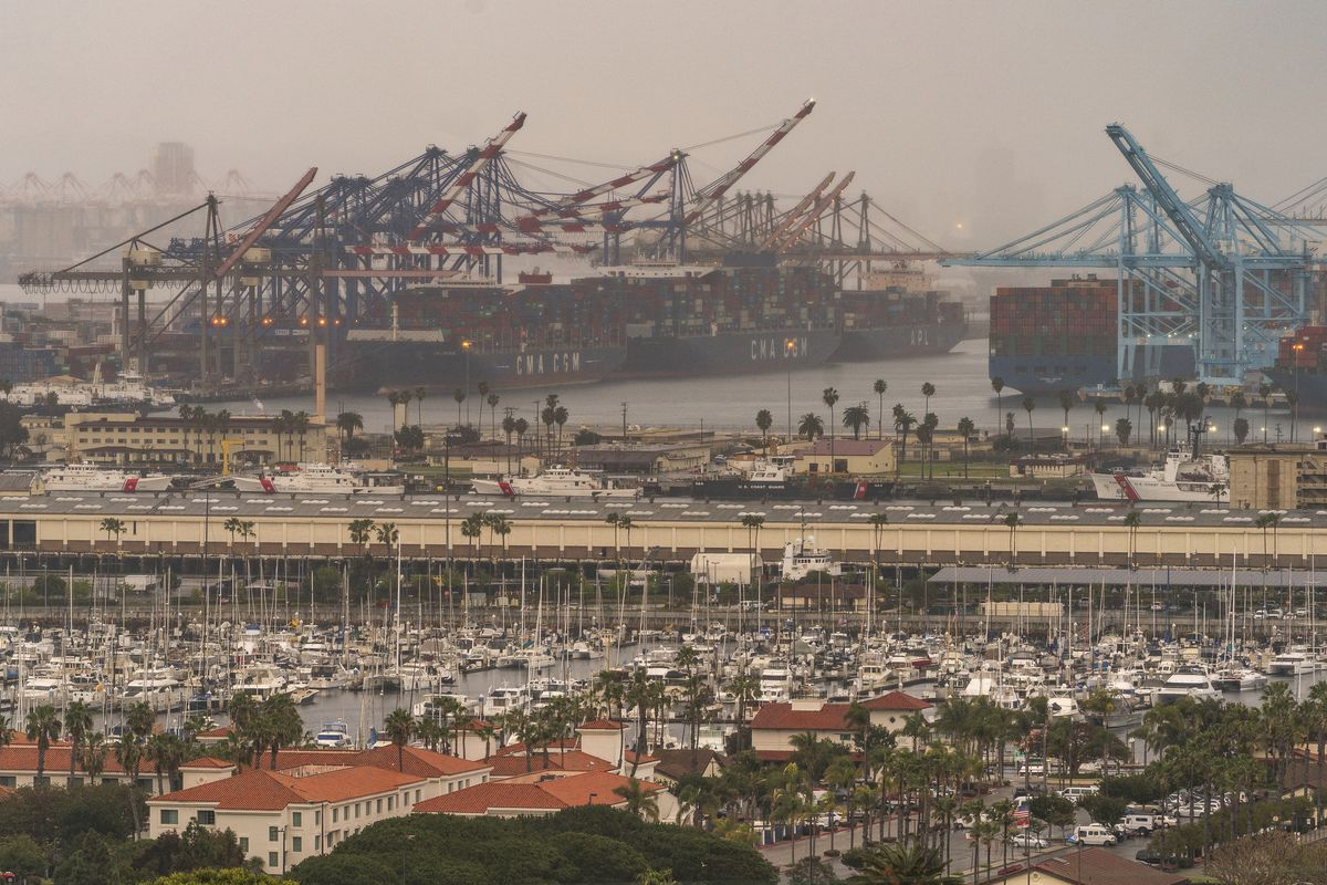 Container cargo ships are seen docked at the Port of Los Angeles. as a trade bottleneck born of the COVID-19 outbreak has U.S. businesses waiting for shipments from Asia even as dozens of container ships remain anchored off the coast of California, unable to unload their cargo.