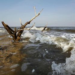 The last remnant of of formerly small island near Cat Island is seen as it is eroded by the surf in Barataria Bay in Plaquemines Parish, La., Wednesday, April 11, 2012.