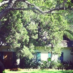 This is Monroe and DiMaggio's newlywed home with signature green shutters (508 N Palm Dr). This is where, on October 6, 1954, the starlet famously declared her divorce from the athlete after only nine months of marriage.