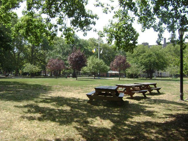 A park clearing with picnic benches and tables. There is green grass in the clearing. There are multiple assorted trees in the distance surrounding the clearing.
