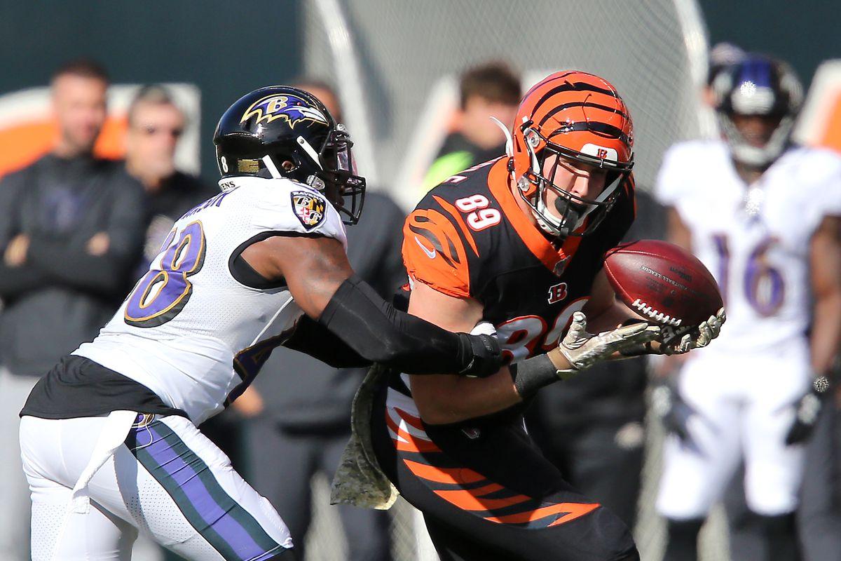Cincinnati Bengals tight end Drew Sample (89) makes a catch against Baltimore Ravens inside linebacker Patrick Onwuasor (48) during the second quarter at Paul Brown Stadium. Mandatory