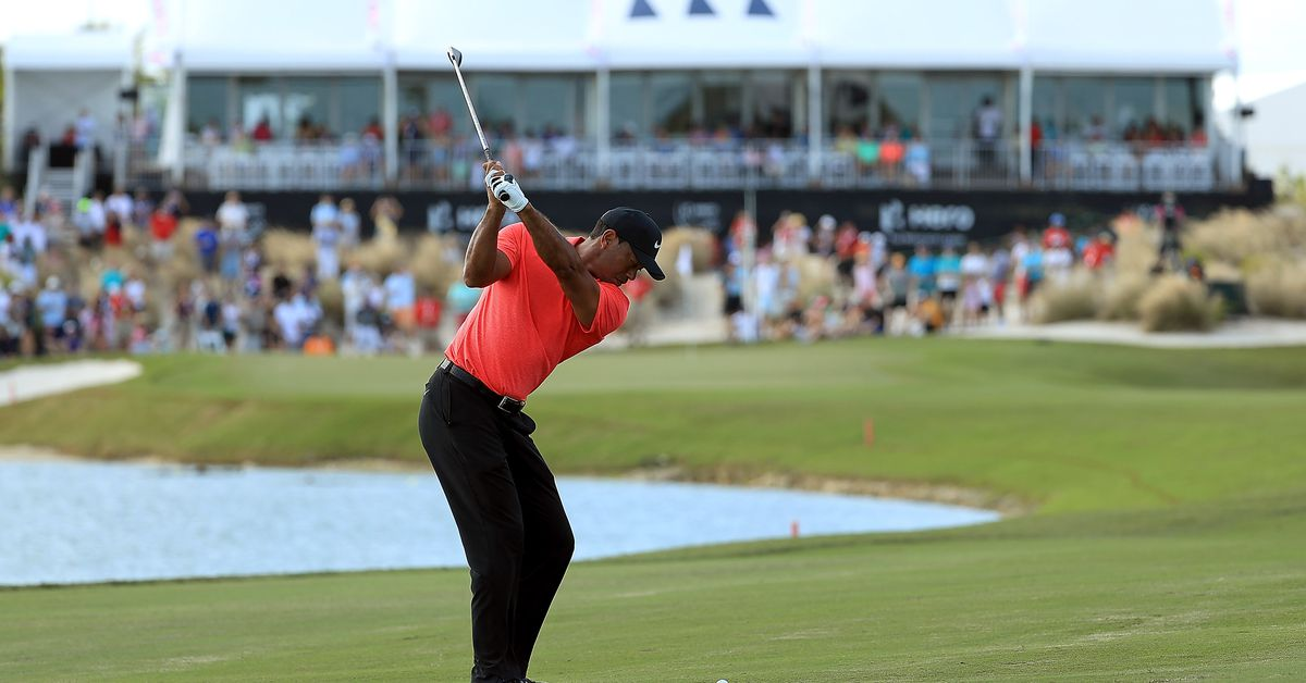 happy birthday tiger woods  where will we see him on the
