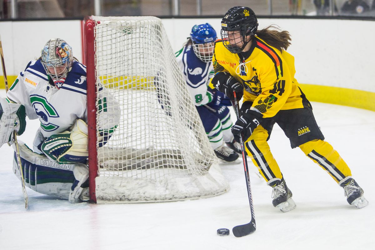 What each NWHL team needs at this point in the offseason
