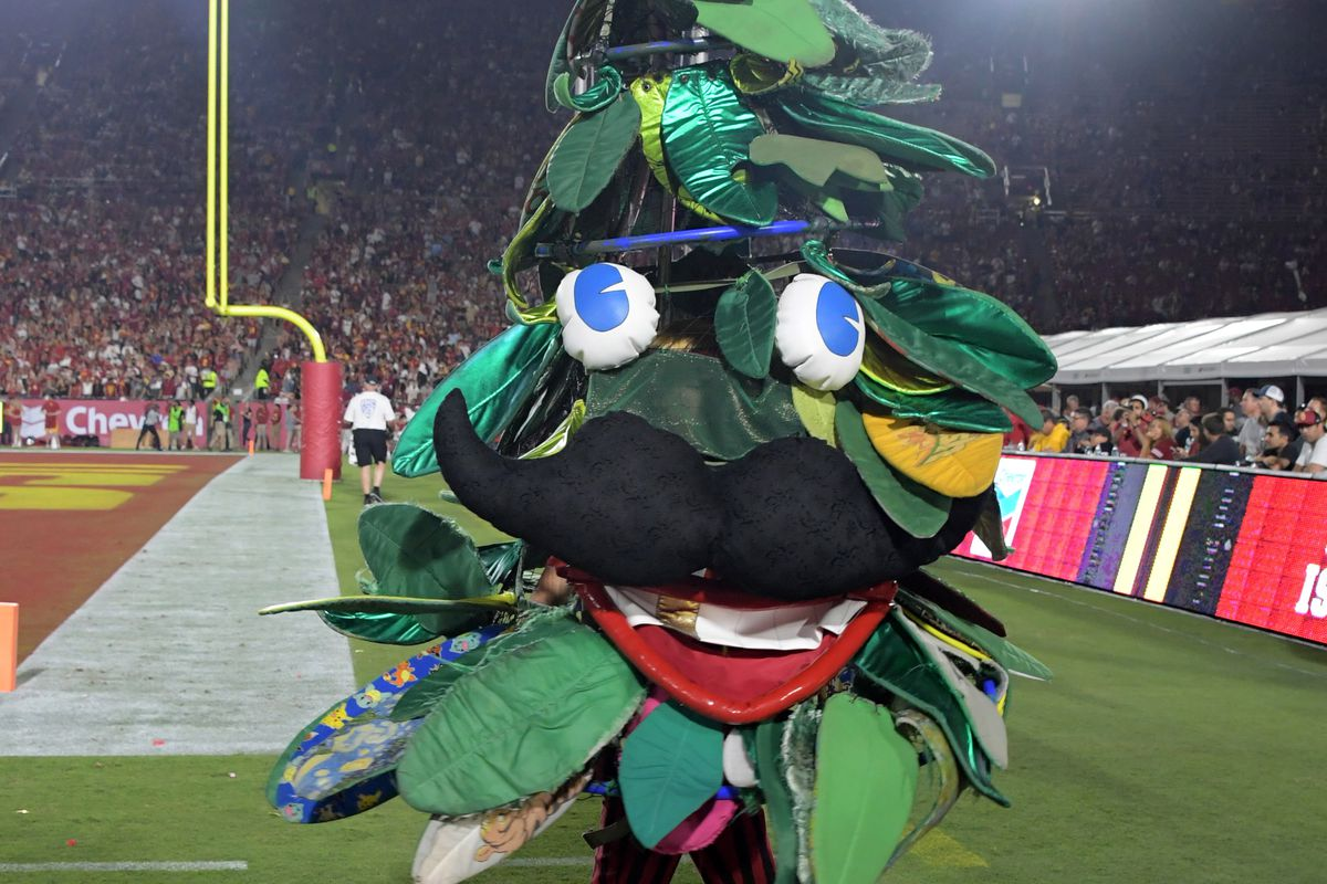 Notre Dame Irish Football Stanford Cardinal Q A With Rule Of Tree