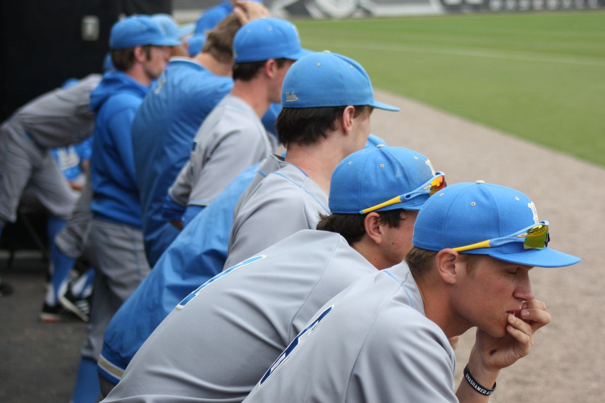 Bruins in the Dugout