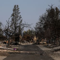 A neighborhood in Talent, Ore., that was destroyed by the Almeda Fire is pictured on Saturday, Sept. 19, 2020. Sisters Tammy Johnson and Misty Pantle and Pantle's three teenage children shared one of the homes that was destroyed.