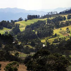 Sunlight plays on a hillside on the road to Alban, Colombia, on Friday, Aug. 23, 2019.
