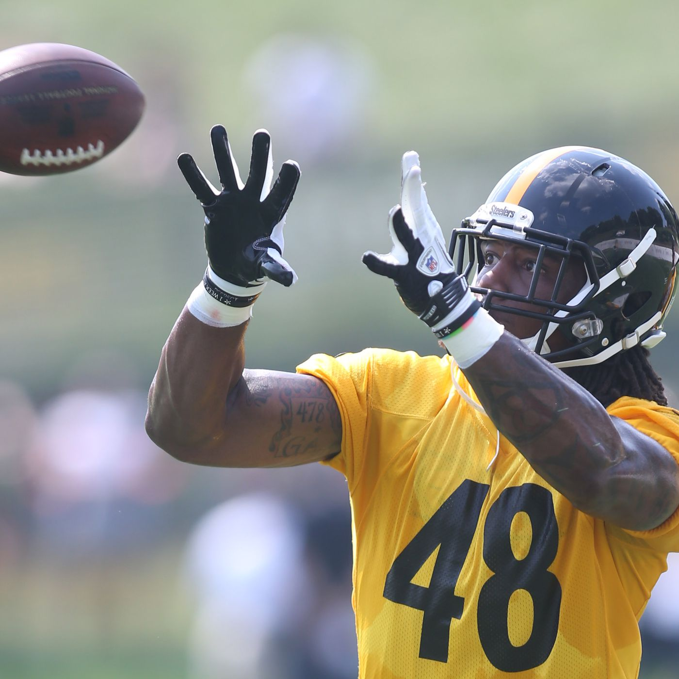 3c1b993cc4c Analysis of the Pittsburgh Steelers first depth chart of 2015 ...