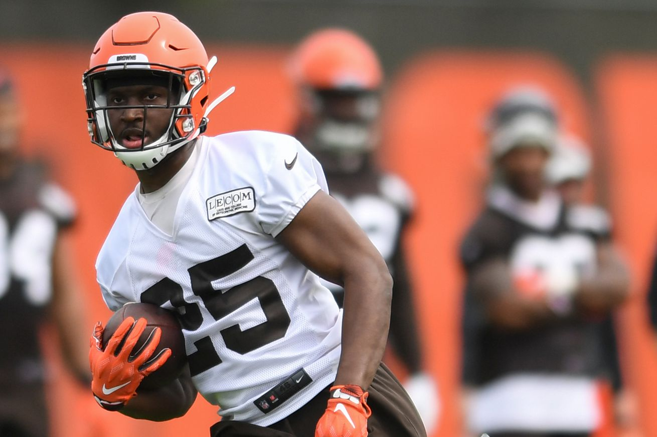 Cleveland Browns Training Camp 2019: RB Preview, Part 2