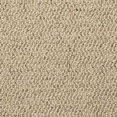 Close up of loop pile carpet style.