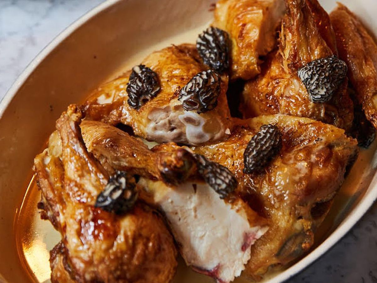 A ceramic dish of roast chicken and morel mushrooms, bathed in a vin jaune sauce, on a marble background