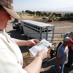 Tami Howell of the Wild Horse and Burro Center looks over the list of trainers and horses Friday at the Extreme Mustang Makeover Competition in Herriman. In the competition, 34 horse trainers from multiple states pick up a preselected wild horse to be trained over the course of the next 90 days.