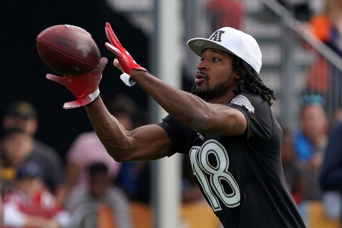 Buffalo Bills return specialist Andre Roberts catches a pass during AFC practice at ESPN Wide World of Sports.